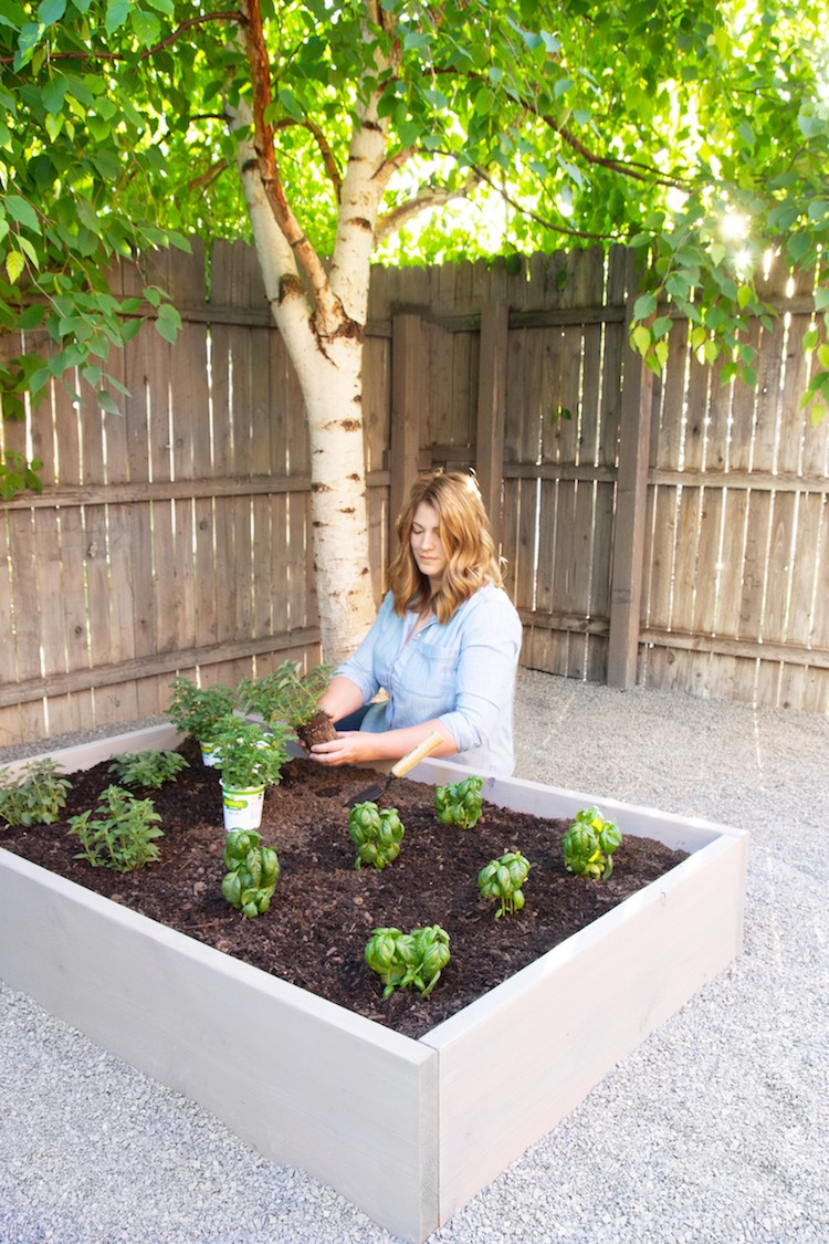 Raised Herb Garden: An Outdoor Space Makeover
